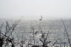 Bijou d'océan