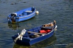 Duo de barques